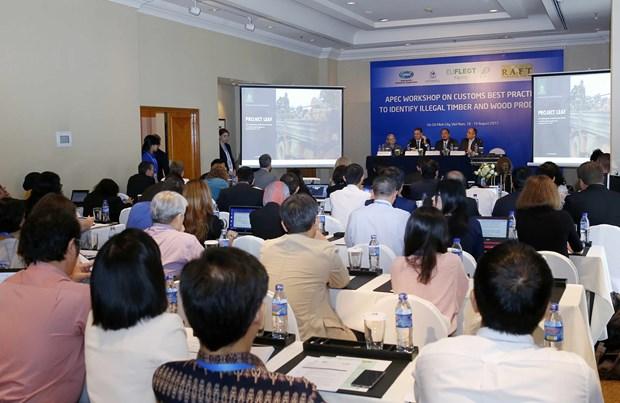 Economias miembros de APEC debaten sobre servicios portuarios hinh anh 1