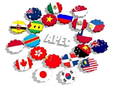 Miembros de APEC buscan mejorar habilidades de negociacion en los TLC hinh anh 1