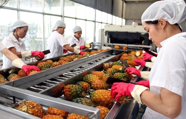 Vietnam preve ingresos multimillonarios por exportacion de verduras y frutas hinh anh 1