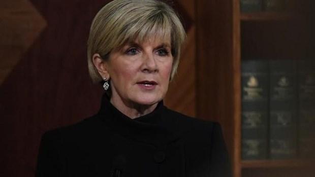 Australia y Singapur intensifican asociacion estrategica integral hinh anh 1