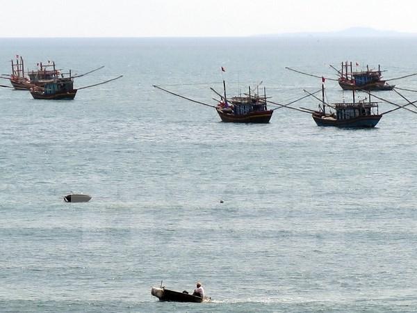 Banco vietnamita respalda a pescadores nacionales mediante prestamos preferenciales hinh anh 1