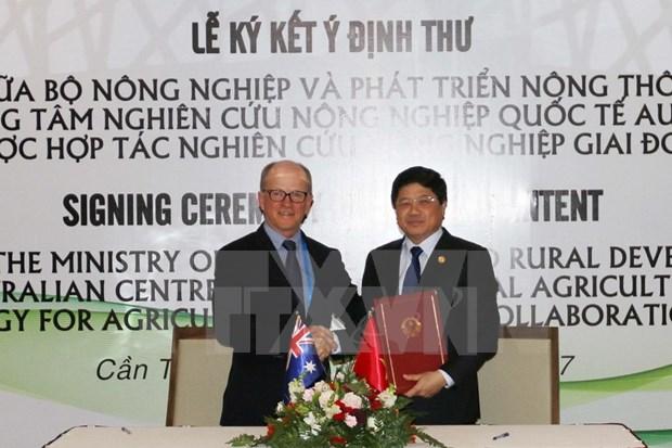 Vietnam y Australia reafirman cooperacion duradera en investigacion agricola hinh anh 1