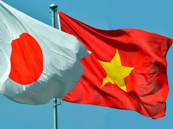 Voluntarios de Cruz Roja de Japon y Vietnam plantan manglares hinh anh 1
