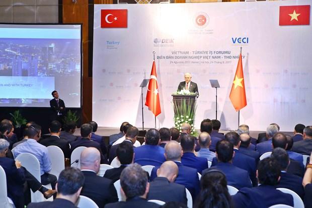 Efectuan Foro Empresarial Vietnam-Turquia hinh anh 1