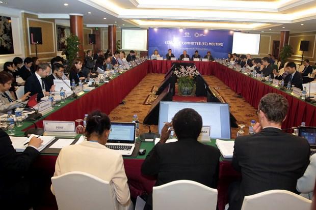 Inauguran segunda reunion del Comite Economico de APEC hinh anh 1