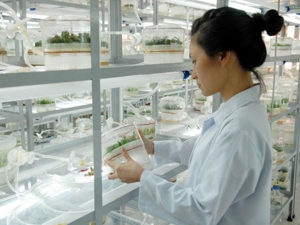 Vietnam y UNESCO firman acuerdo para establecer centros de matematicas y fisica hinh anh 1