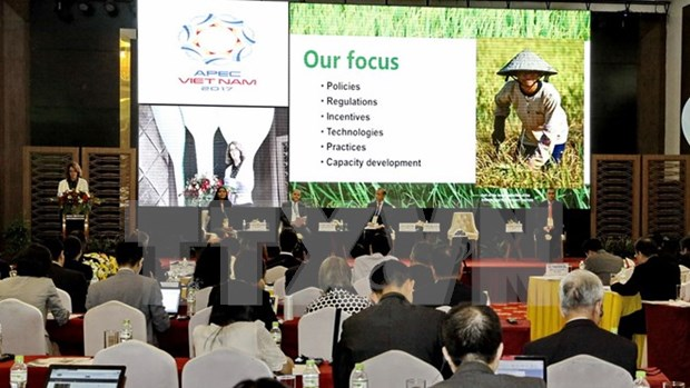 Economias de APEC debaten sobre agricultura sostenible hinh anh 1