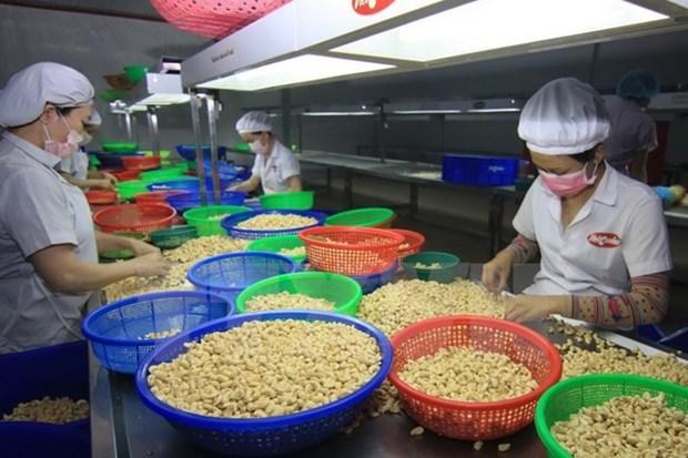 Actividades de comercio exterior de Vietnam mantienen su curva ascendente hinh anh 1