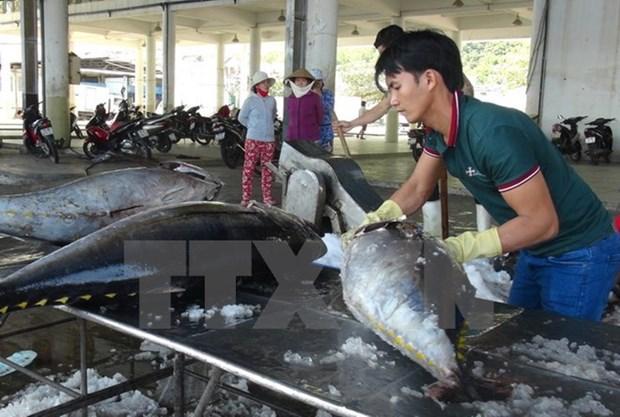 Vietnam ingresa mas de cinco mil millones de dolares por venta de mariscos hinh anh 1
