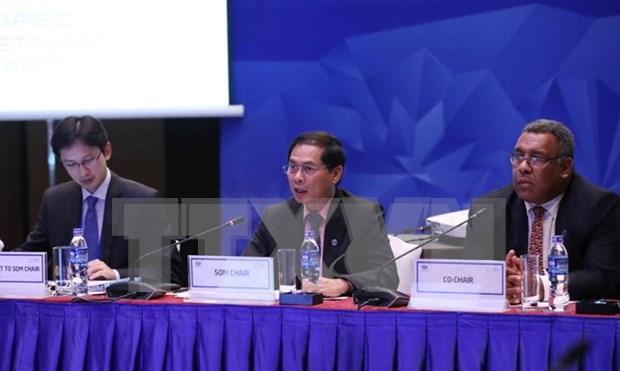 APEC Vietnam 2017: varias actividades en ultima jornada de comites y grupos concerniente de SOM3 hinh anh 1