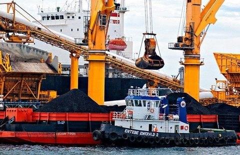 Grupo indonesio construira puerto de carbon en Vietnam hinh anh 1