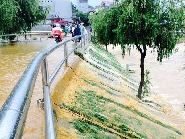 Localidad vietnamita implementa medidas contra inundaciones hinh anh 1