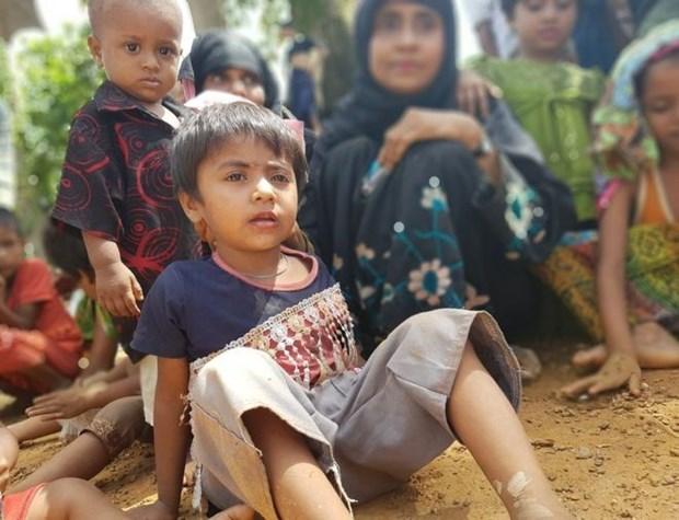 Consejo de Seguridad de la ONU debate sobre violencia en Myanmar hinh anh 1