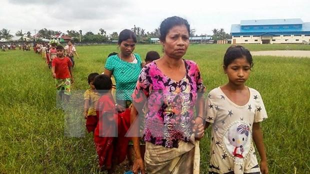 Myanmar: mas de 18 mil rohingyas huyen a Bangladesh hinh anh 1