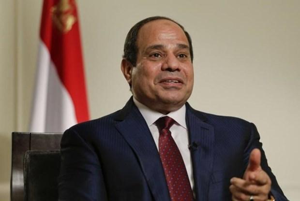 Presidente de Egipto visitara Vietnam hinh anh 1