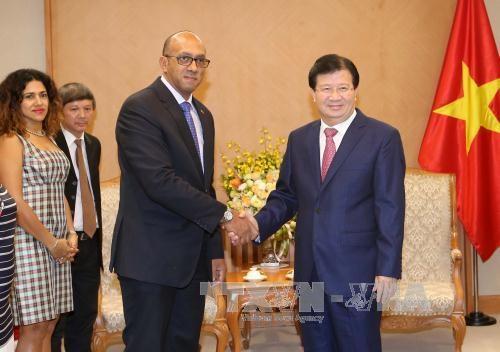Vicepremier vietnamita aboga por promover eficiencia de mecanismos de cooperacion con Cuba hinh anh 1