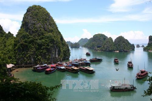 Numero de turistas extranjeros a provincia de Quang Ninh crece 20 por ciento hinh anh 1