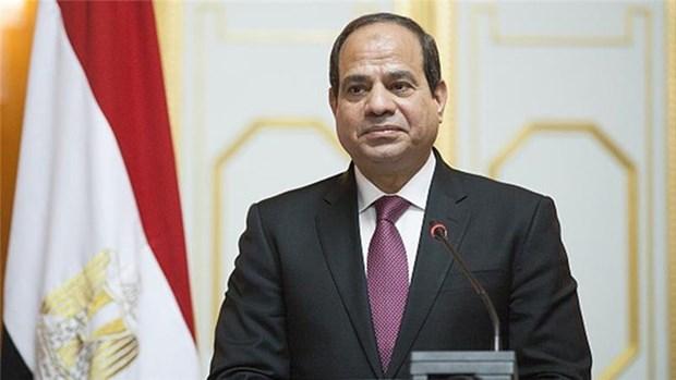 Vietnam, prioridad en la politica hacia el Este de Egipto hinh anh 1