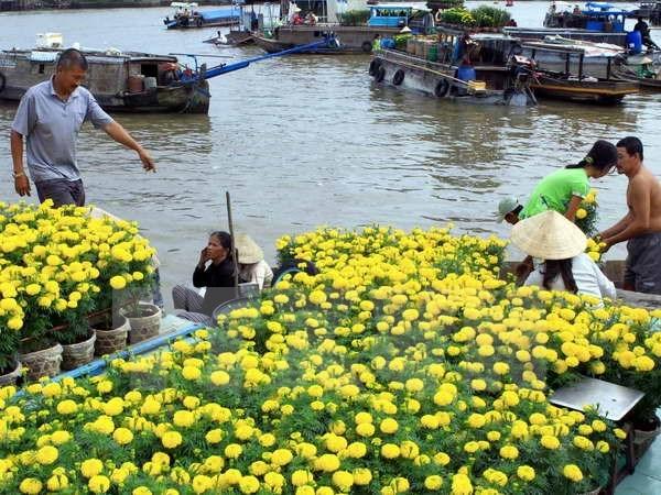 Promueven cooperacion entre ciudad vietnamita de Can Tho y Japon hinh anh 1