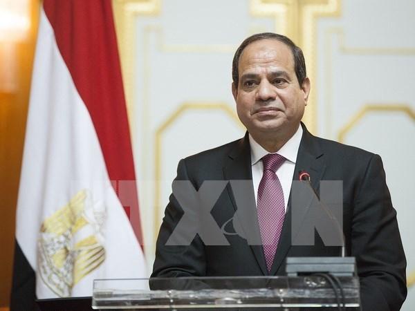 Inicia presidente de Egipto visita estatal a Vietnam hinh anh 1