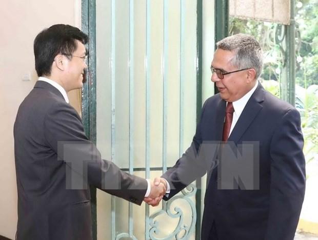 Vietnam y Cuba impulsan cooperacion en proceso de desarrollo socioeconomico hinh anh 1
