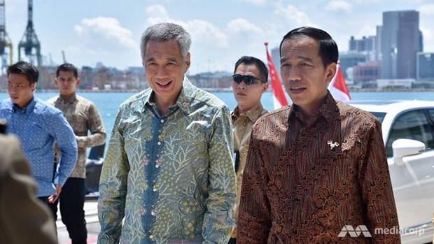 Indonesia y Singapur estrecharan lazos de cooperacion hinh anh 1