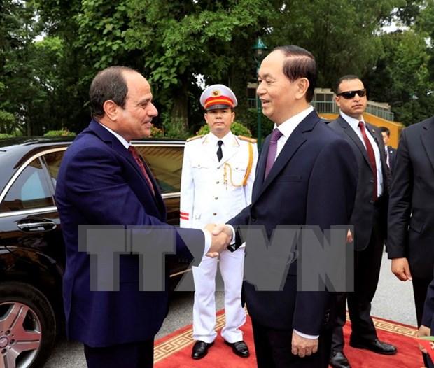 Presidente de Egipto concluye visita a Vietnam hinh anh 1