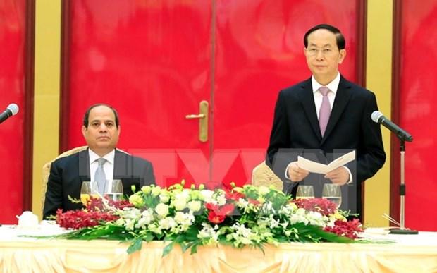 Presidente de Vietnam aprecia relacion con Egipto hinh anh 1