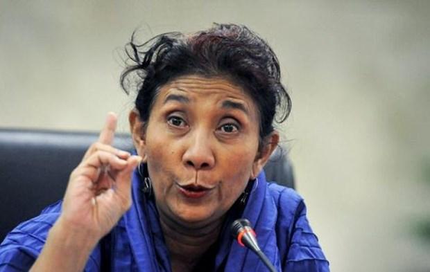 Japon ayudara al desarrollo de las islas exteriores de Indonesia hinh anh 1