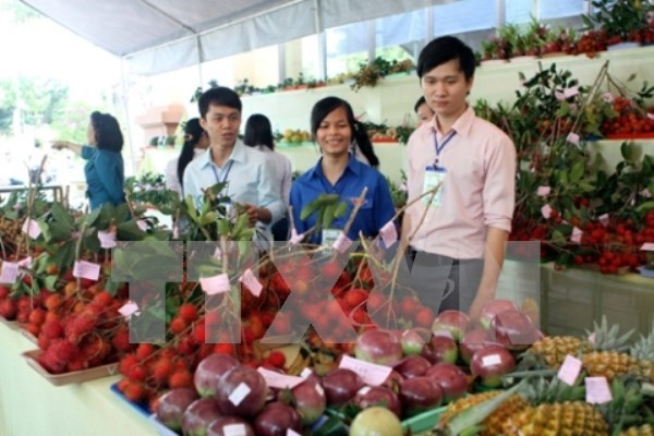 Vietnam aumenta importaciones de frutas y vegetales hinh anh 1
