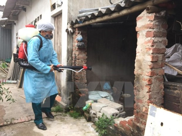 Hanoi refuerza medidas para prevenir propagacion del dengue hinh anh 1