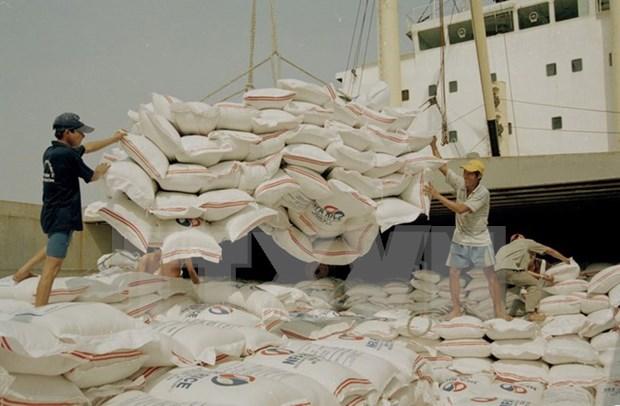Vietnam preve producir 44,1 millones de toneladas de arroz en 2017 hinh anh 1