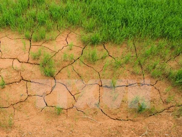 Reitera Vietnam compromiso de reforzar conservacion medioambiental hinh anh 1