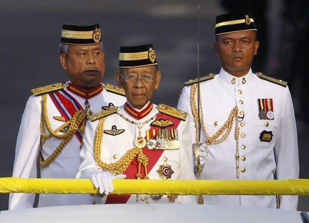 Vietnam lamenta fallecimiento del Sultan Abdul Halim de Malasia hinh anh 1