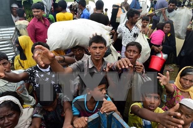 Naciones Unidas exhorta a poner fin a violencia en Rakhine hinh anh 1