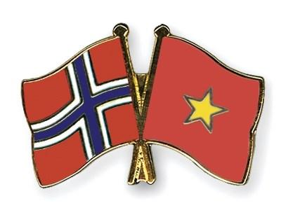Noruega financia proyecto de apoyo a ninos minusvalidos en Vietnam hinh anh 1
