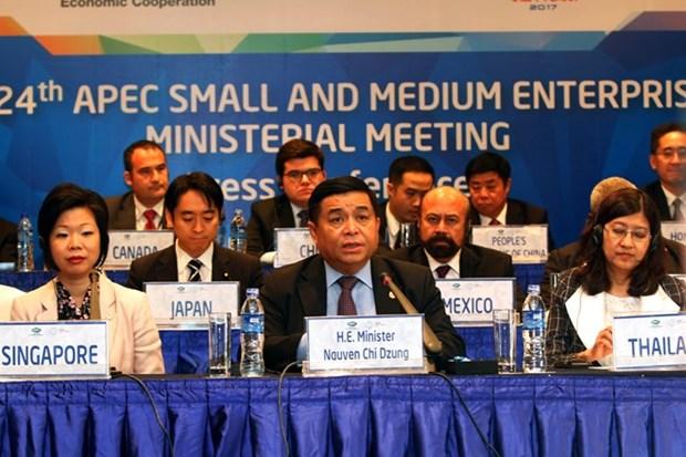 APEC aprueba importantes documentos sobre desarrollo de PyMEs hinh anh 1