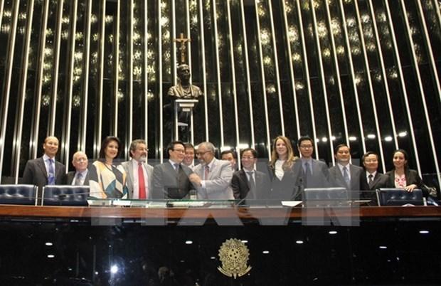 Vietnam y Brasil intensifican relaciones de colaboracion hinh anh 1