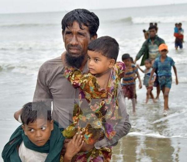 Malasia urge a abordar crisis de los rohingyas en Myanmar hinh anh 1