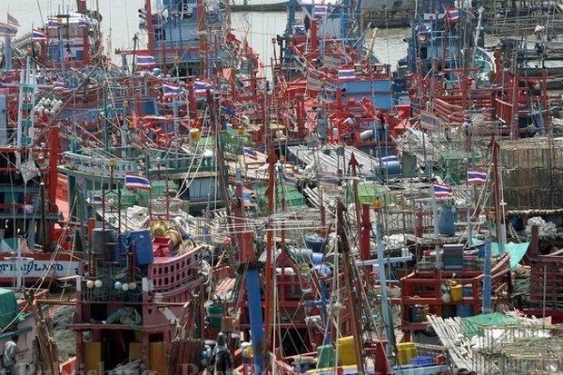 Tailandia: pescadores protestan contra las regulaciones pesqueras de la Union Europea hinh anh 1