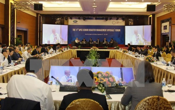 Economias de APEC enfatizan papel de tecnologia en respuesta a desastres naturales hinh anh 1