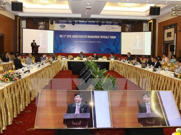 Clausuran reunion de APEC sobre gestion de desastres naturales hinh anh 1