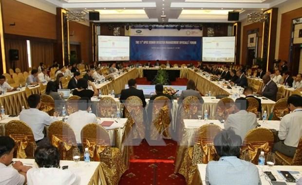 Economias de APEC intercambian experiencias en enfrentamiento a desastres naturales hinh anh 1
