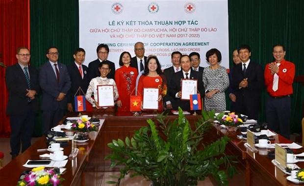 Filiales de Cruz Roja de Vietnam, Laos y Camboya firman acuerdo de cooperacion hinh anh 1