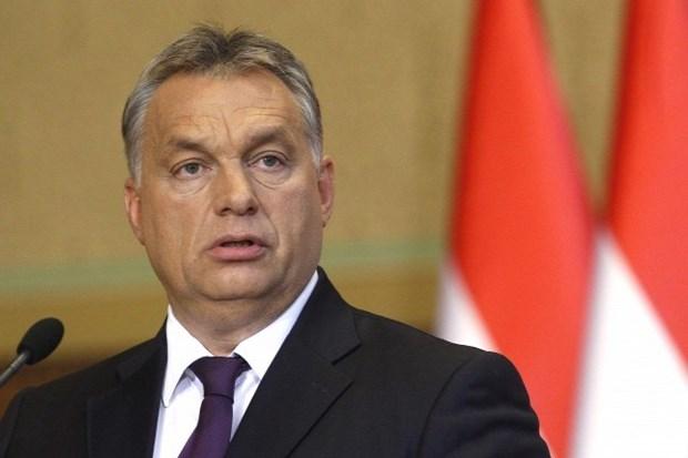 Vietnam y Hungria gozan de crecientes nexos en multiples esferas hinh anh 1