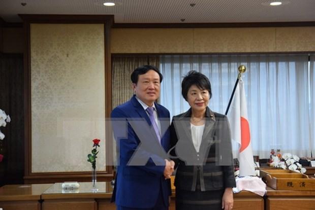 Robustecen lazos Vietnam- Japon en reforma judicial hinh anh 1