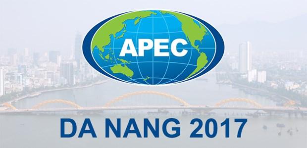 Ciudad vietnamita de Da Nang lista para la Semana de Alto Nivel del APEC 2017 hinh anh 1