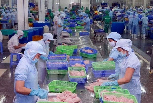 Vietnam traza meta de lograr nueve millones de dolares por exportacion acuicola hinh anh 1