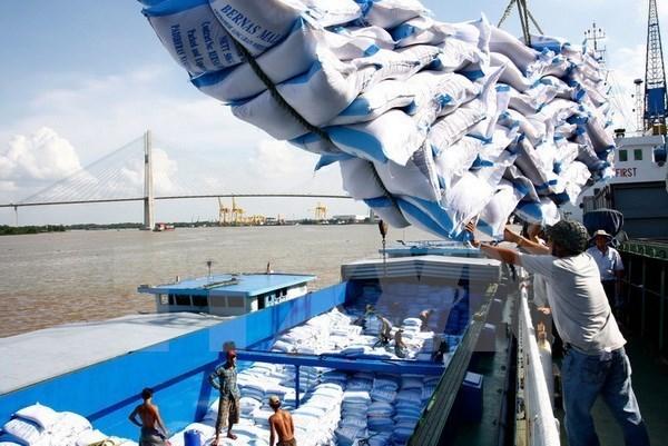 Vietnam preve aumento de valor de exportacion de arroz hinh anh 1