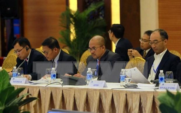 Provincia vietnamita garantiza seguridad para el Foro sobre Mjueres y Economia de APEC 2017 hinh anh 1